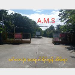 ခရေပင်ရိပ်မွန်အိမ်ရာ Image, classified, Myanmar marketplace, Myanmarkt