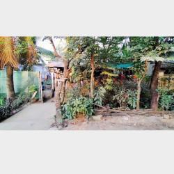 အိမ်နှင့်ခြံအရောင်း Image