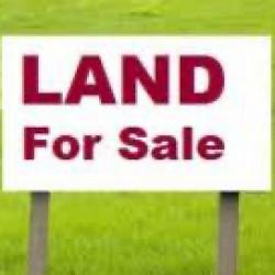 မြေနီကုန်း မြေကွက်ကျယ် ရောင်းမည် Image, classified, Myanmar marketplace, Myanmarkt